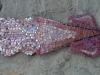 Seppia e pesci