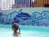 Decorazioni della piscina