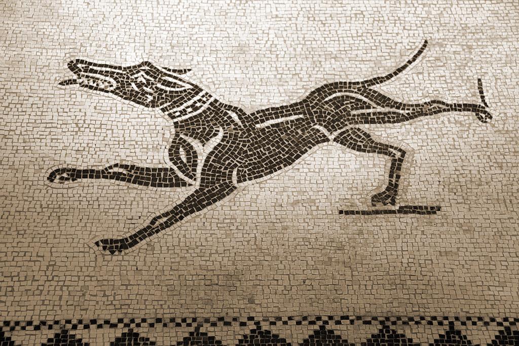 Domus del mito sant 39 angelo in vado mosaico a rimini e for Marini arredamenti sant angelo in vado
